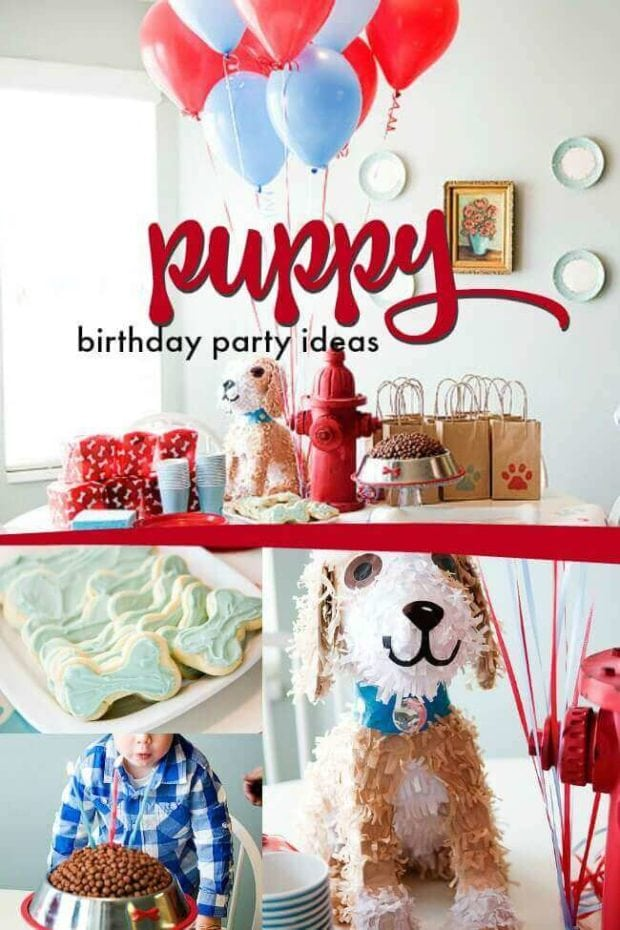 Creative Puppy Party Ideas