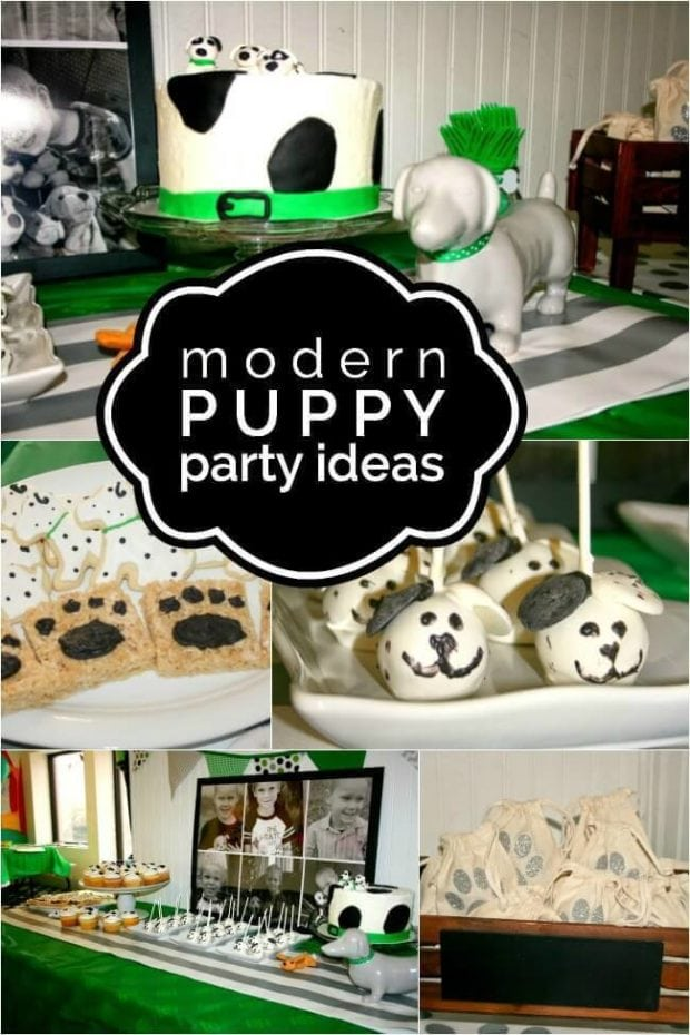Boys Modern Puppy Birthday Party