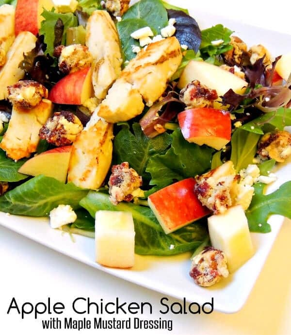 Apple Chicken salad with Craisins Clusters