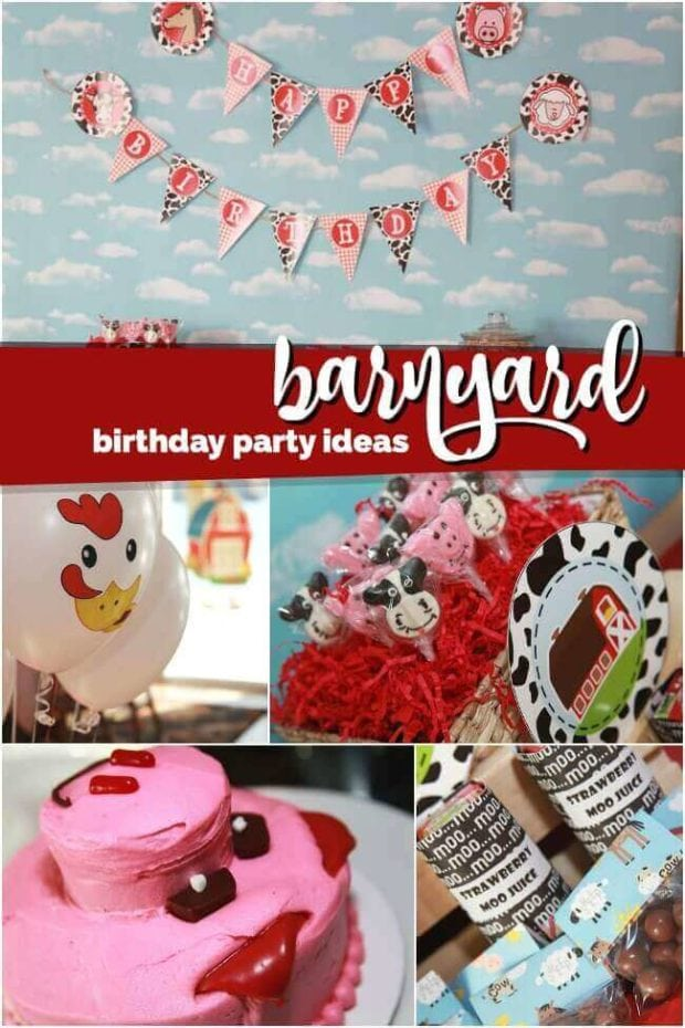 Boy's Farm Themed Birthday Party Ideas