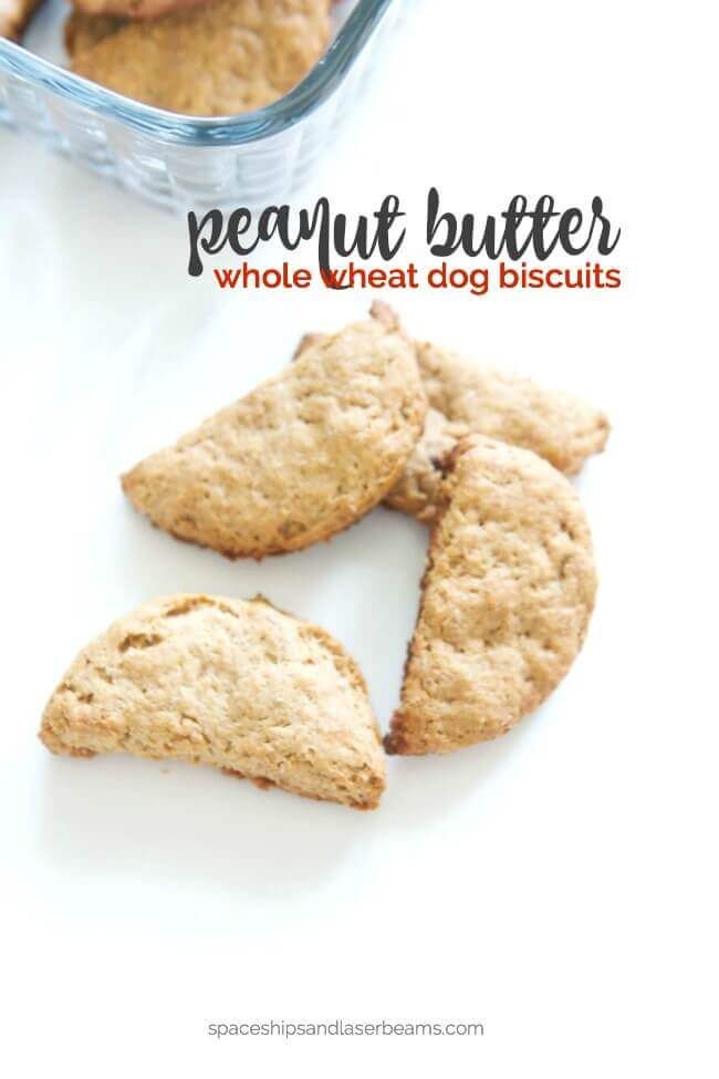 Homemade Peanut Butter Whole Wheat Dog Biscuits