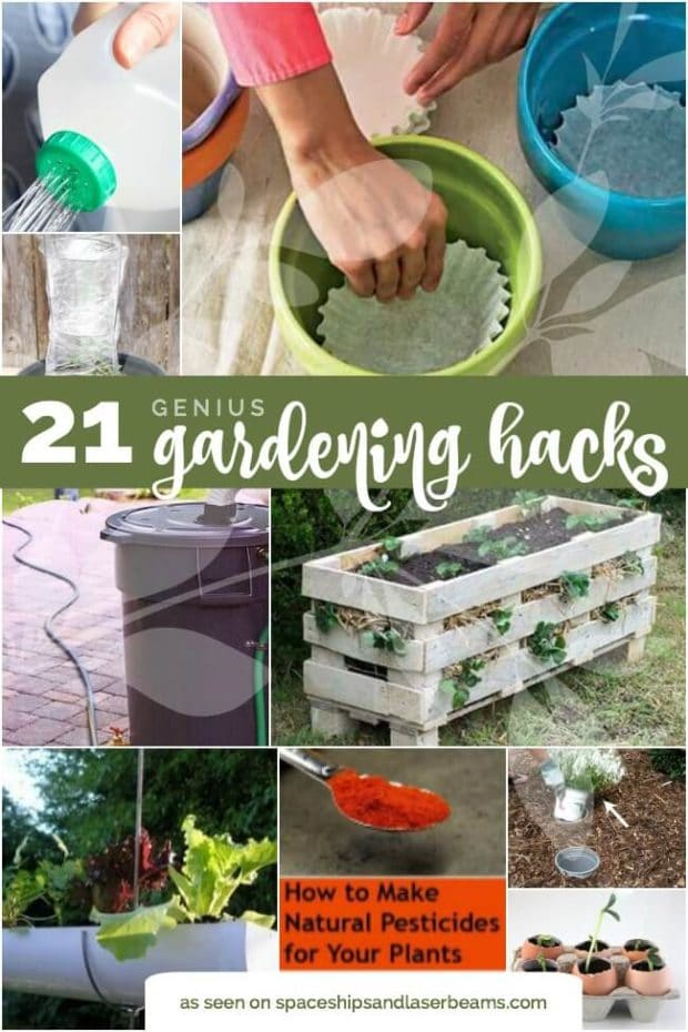21 Genius gardening hacks from Spaceships and Laser Beams.