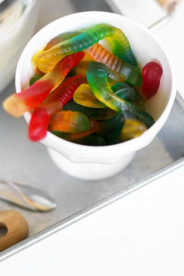 Gummy Worms for Mud Pie Pops
