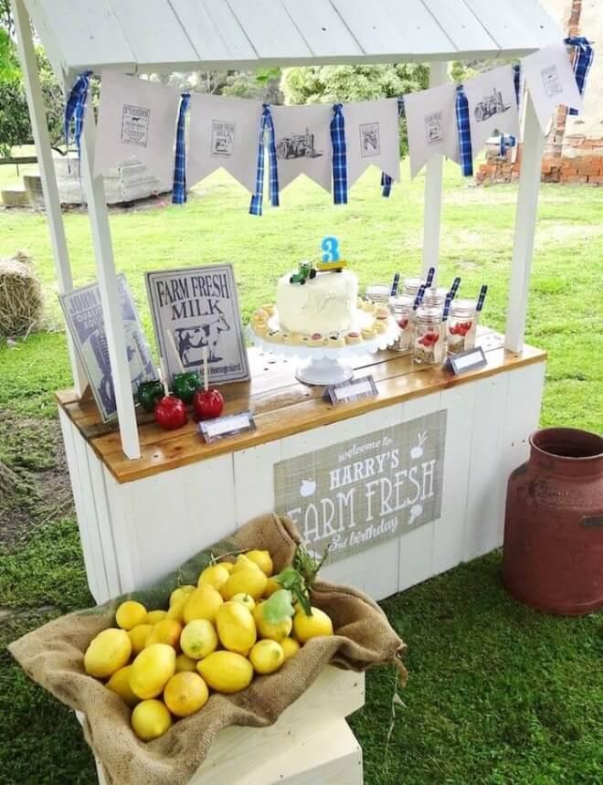 Boy's Farm Fresh Birthday Party Ideas
