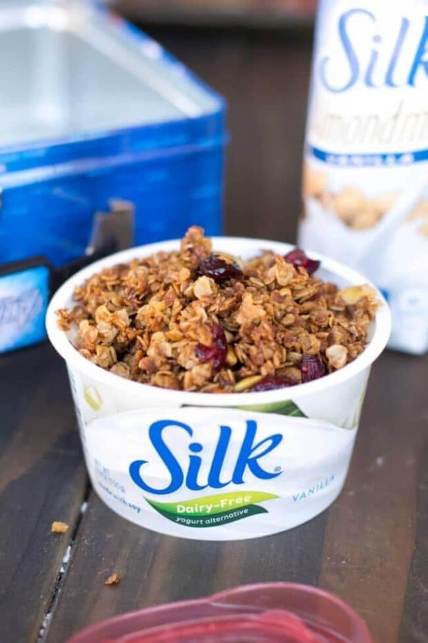 Dairy Free Yogurt with Granola