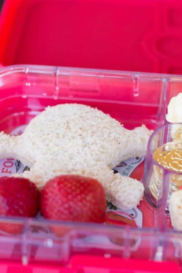 Pirate Sandwich Bento Lunchbox