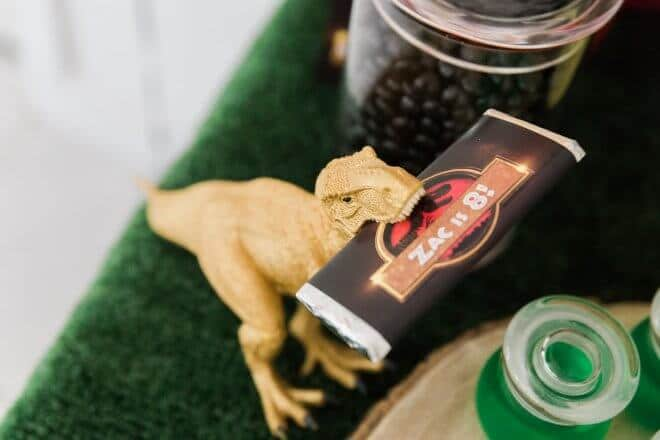 Boys Jurassic Park Candy bars