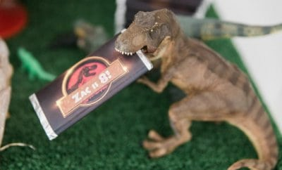 Jurassic Park Birthday Party Ideas