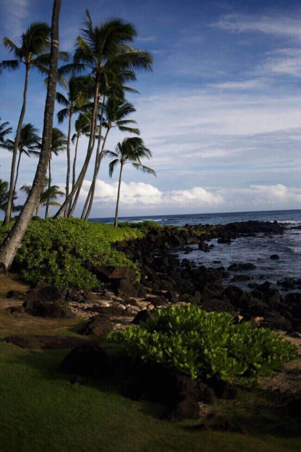 Aulii Luau Sheraton Kauai Poipu Beach
