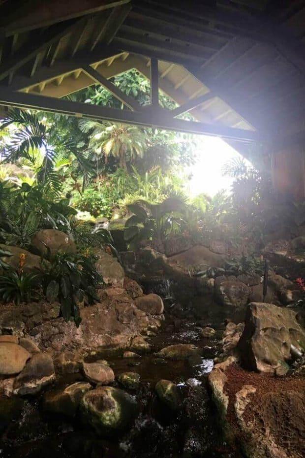 Duke's Waterfall