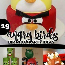 Angry Bird Birthday Party Ideas