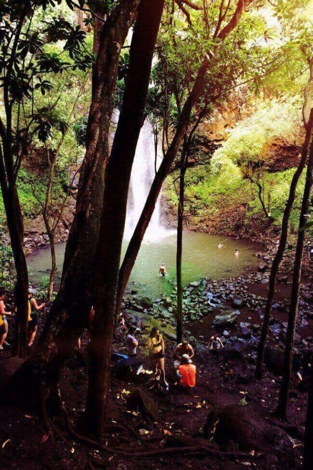 Rainbow Tours Secret Falls Kauai