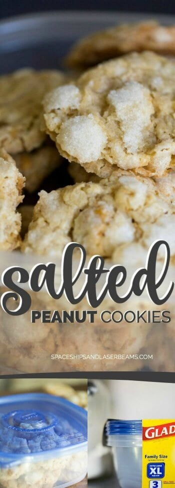 Salted Peanut Cookies
