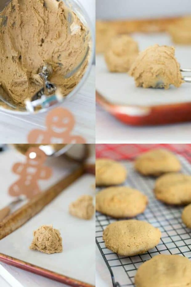 Easy Gingerbread Cookie Ideas