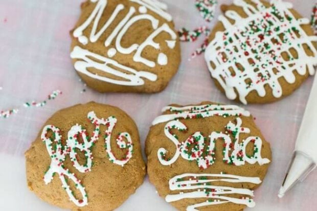 Ideas for Cookies for Santa