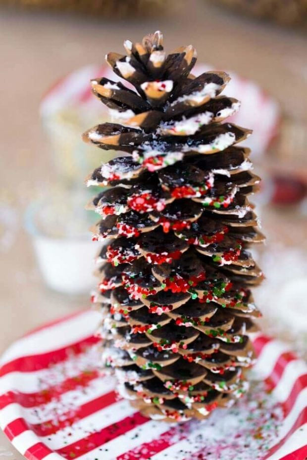 Pine Cone Kid's Craft