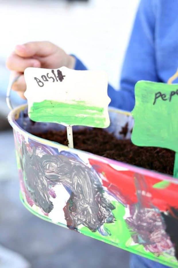 Kid's Herb Garden