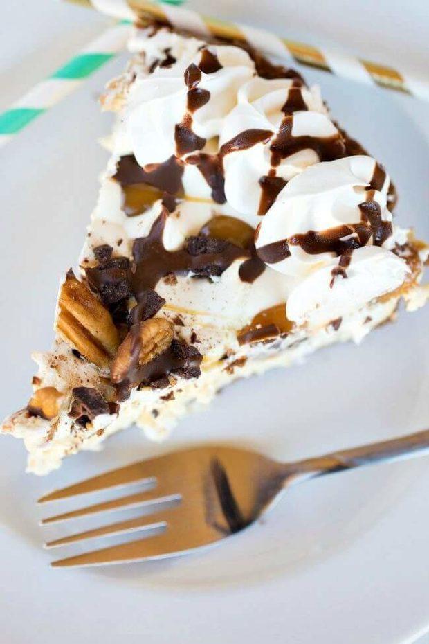 Turtle Pie Slice