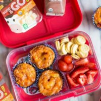 Hot & Cold Lunch Ideas for Kids