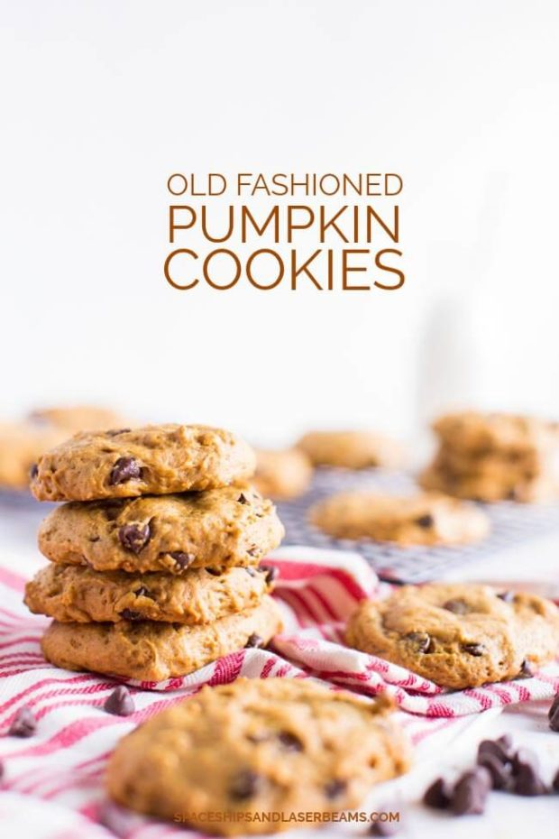 Old Fashioned Chocolate Chip Cookies Recipe Divas Can Cook Simple old fashioned chocolate chip cookies