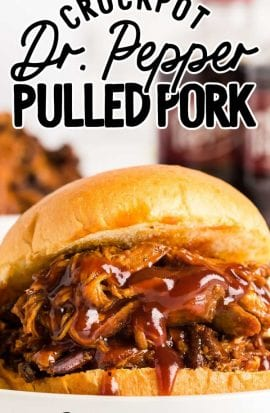 dr pepper pulled pork sandwich on a plate