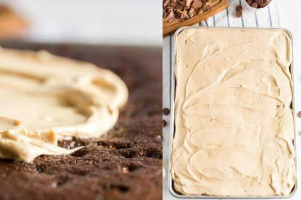 Peanut Butter and Chocolate Texas Sheet Cake