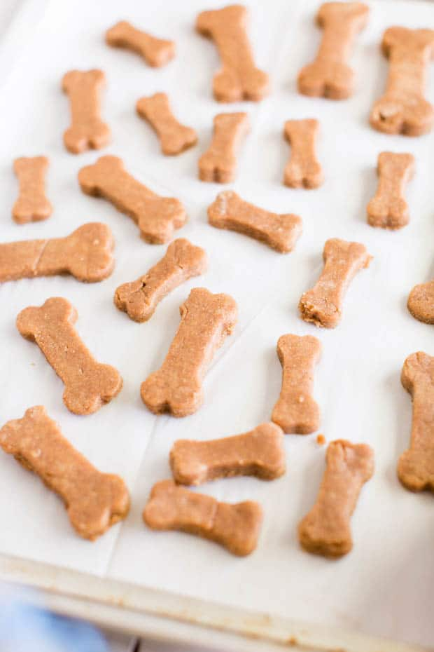 homemade dog treats on a cookie sheet