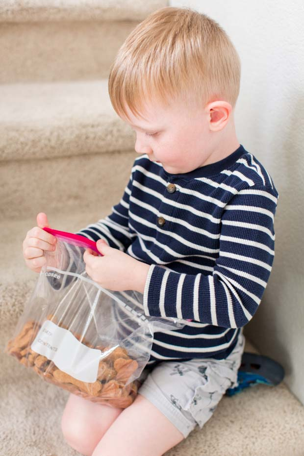 Boy Holding Bag of Homemade Dog Treats