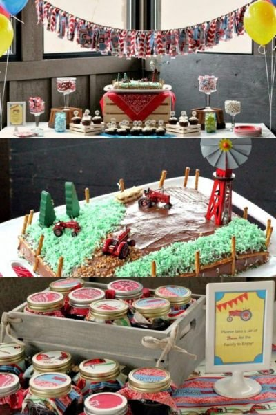 farm birthday party ideas