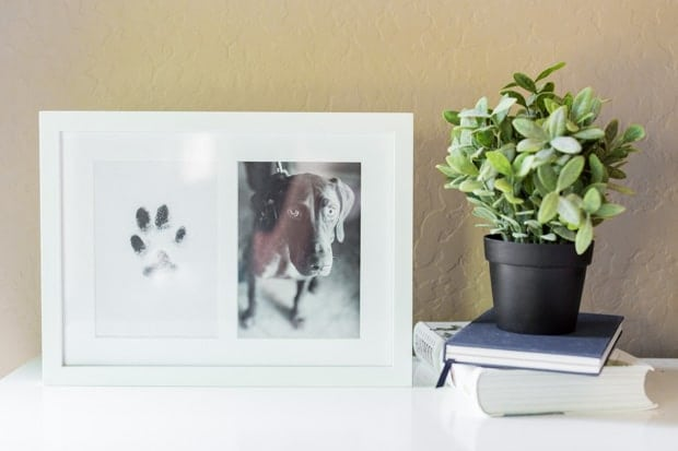 Easy DIY Paw Print Art