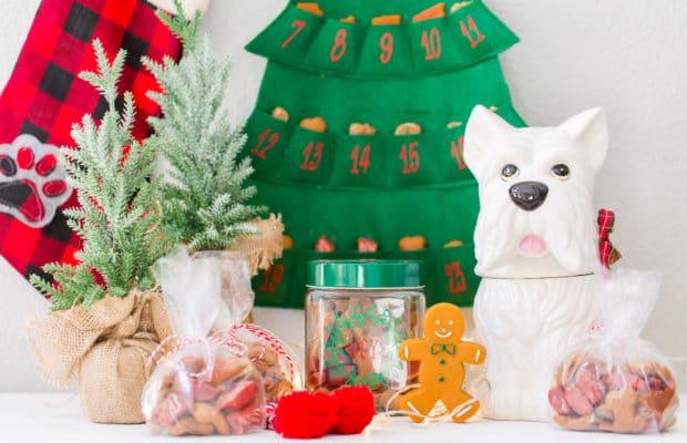 Best Dog Present Ideas