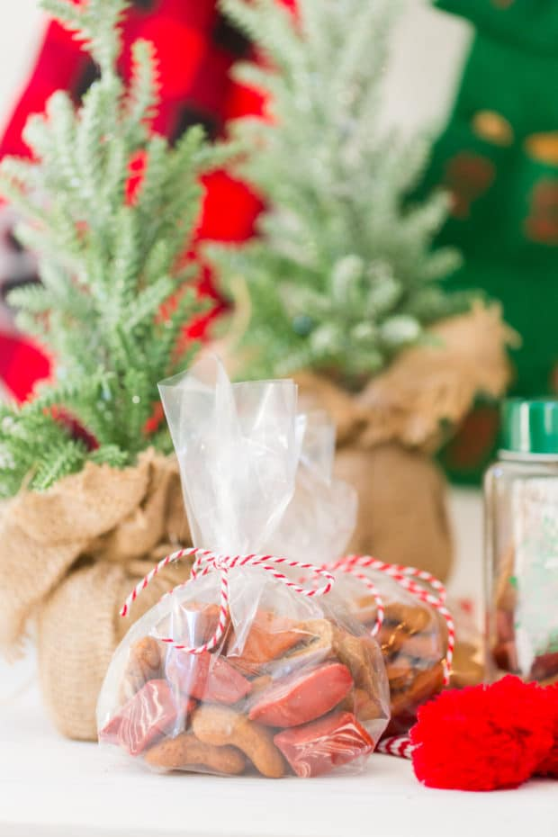 Dog Treat Gift Ideas
