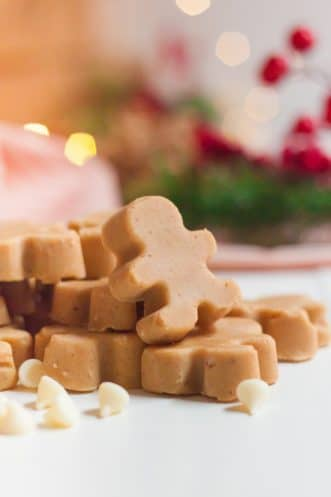 Gingerbread Fudge Featured