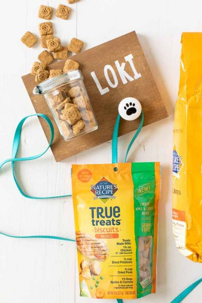 Easy DIY for Dogs