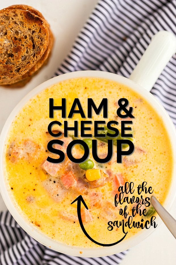 overhead shot of ham and cheese soup