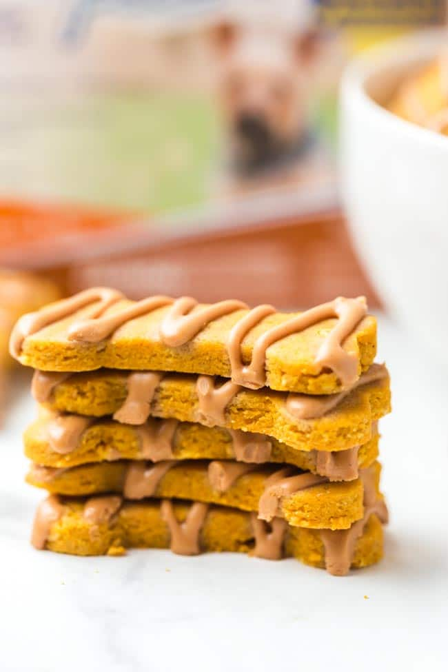 Homemade Peanut Butter and Pumpkin Dog Treats