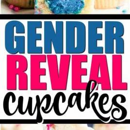 Gender Reveal Cupcakes Pin