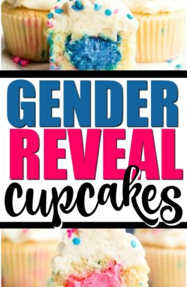 Gender Reveal Cupcakes Pin