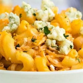 A close up of a plate of food, with Cheese and Chicken
