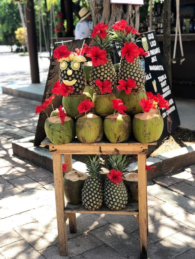 Fresh Pineapples in Mexico
