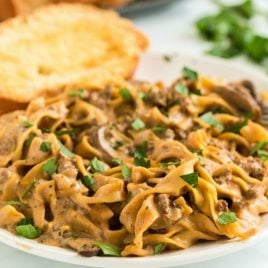 A plate of food with broccoli, with Beef Stroganoff