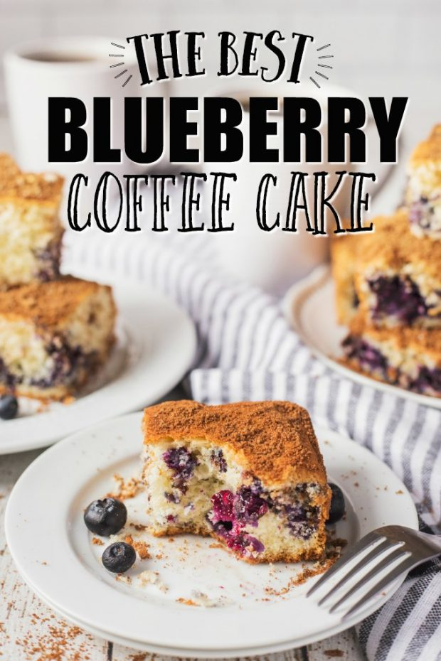 A piece of cake on a plate, with Blueberry and Coffee cake
