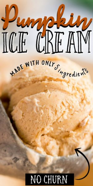 scoop of pumpkin ice cream