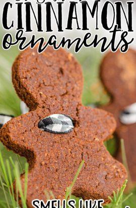 close up shot of cinnamon ornaments