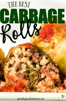 A close up of food, with Cabbage roll