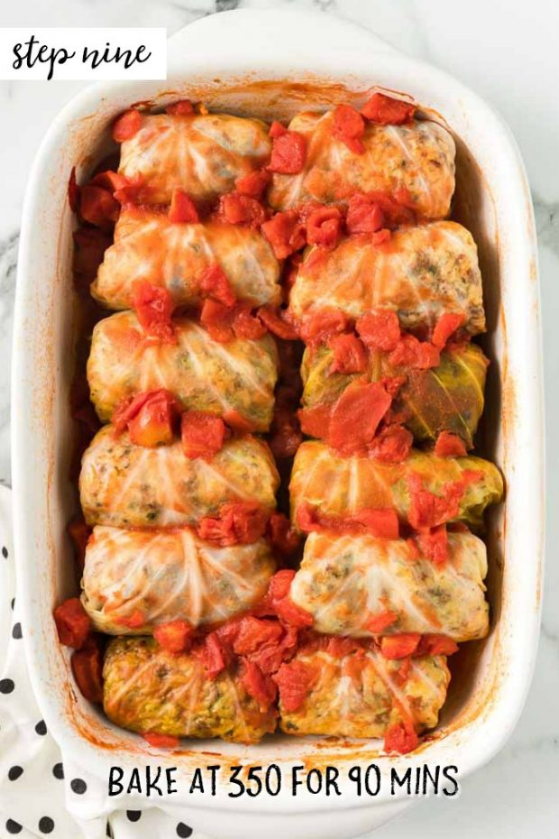 cooked cabbage rolls in casserole dish