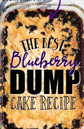 Blueberry Dump Cake in baking dish