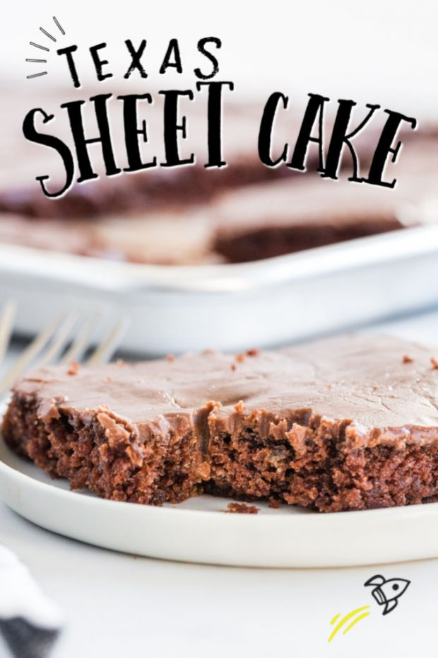 A piece of cake on a plate, with Sheet cake and Chocolate