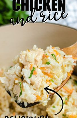 closeup of chicken and rice on wooden spoon