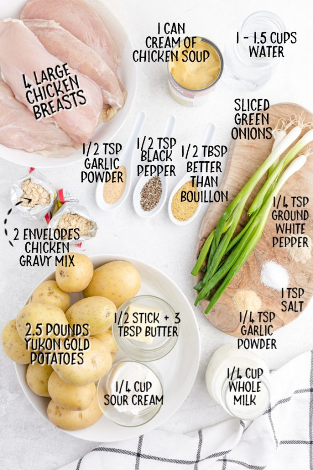 ingredients for chicken and gravy overhead shot